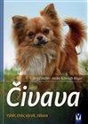 Čivava
