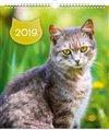 Obálka knihy Nástěnný kalendář Kočky 2019
