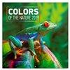 Obálka knihy Poznámkový kalendář Barvy v přírodě 2019