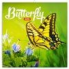 Obálka knihy Poznámkový kalendář Motýli 2019