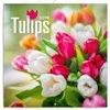 Obálka knihy Poznámkový kalendář Tulipány 2019