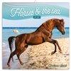 Obálka knihy Poznámkový kalendář Koně a moře 2020, 30 × 30 cm