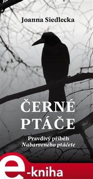 Obálka titulu Černé ptáče