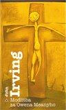 Modlitba za Owena Meanyho (Kniha, vázaná) - obálka