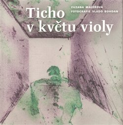 Obálka titulu Ticho v květu violy