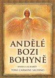 Obálka knihy Andělé bozi bohyně