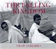 Obálka knihy The Falling Kingdom