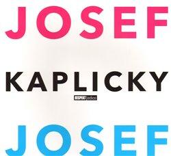 Obálka titulu Josef a Josef Kaplicky