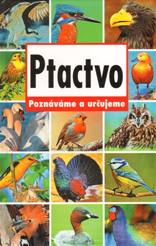 Ptactvo - Poznáváme a určujeme - - | Replicamaglie.com
