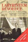 Labyrintem revoluce (Aktéři, zápletky a křižovatky jedné politické krize (od listopadu 1989 do června 1990)) - obálka