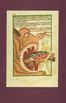 Obálka titulu The Jena Codex