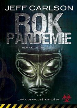 Rok pandemie