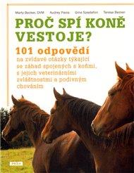 Proč spí koně vestoje?