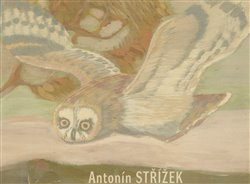 Obálka titulu Antonín Střížek