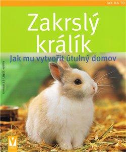 Zakrslý králík – Jak mu vytvořit útulný domov