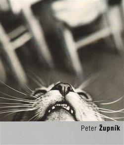 Obálka titulu Peter Župník
