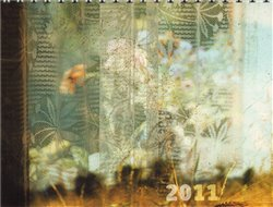 Kalendář Daniel Reynek 2011 - stolní