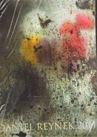 Kalendář Daniel Reynek 2011 - nástěnný