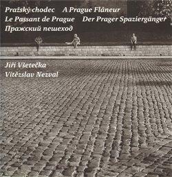Obálka titulu Pražský chodec