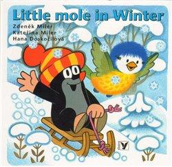 Obálka titulu Little Mole in Winter