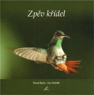 Zpěv křídel - Ivo Stehlík | Booksquad.ink