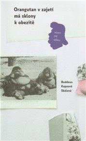 Orangutan v zajetí má sklon k obezitě