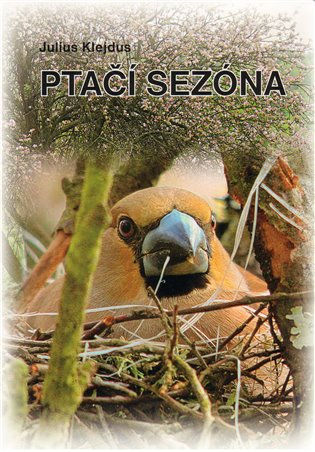 Ptačí sezóna - Julius Klejdus | Booksquad.ink