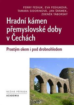 Obálka titulu Hradní kámen přemyslovské doby v Čechách