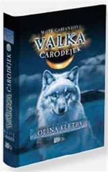 Obálka titulu Odina kletba