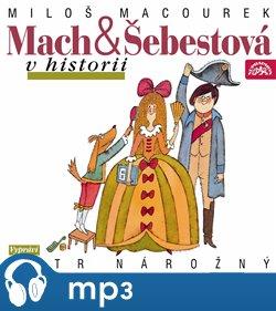 Obálka titulu Mach a Šebestová v historii