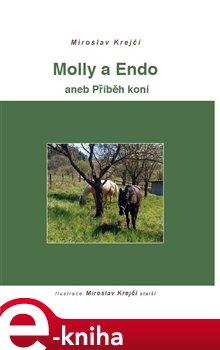 Obálka titulu Molly a Endo