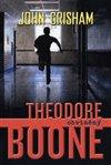 Obálka knihy Theodore Boone 3 - Obviněný