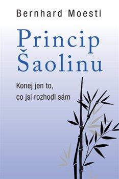 Obálka titulu Princip šaolinu