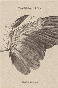 Obálka titulu Zastřihávání křídel