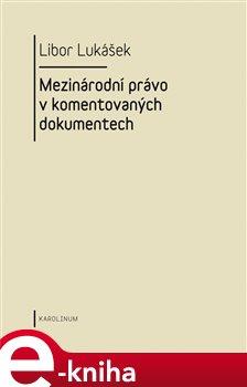Obálka titulu Visegrádská skupina a její vývoj v letech 1991-2004