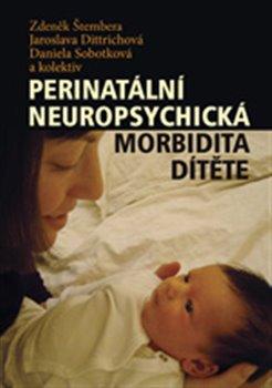 Obálka titulu Perinatální neuropsychická morbidita dítěte