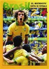 Obálka knihy Brasil 2014 - XX. Mistrovství světa ve fotbale