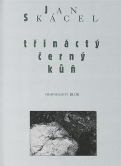 Obálka titulu Třináctý černý kůň