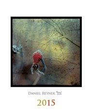 Kalendář Daniel Reynek 2015 - nástěnný