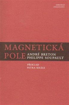 Obálka titulu Magnetická pole