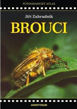 Obálka titulu Brouci