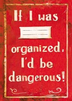 Obálka titulu Sešit - If I was organized, I'd be dangerous!