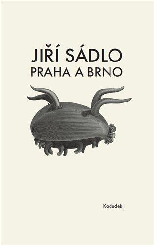 Praha a Brno - Jiří Sádlo | Booksquad.ink