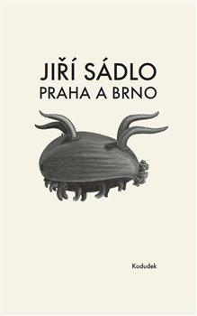 Obálka titulu Praha a Brno