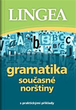 Obálka titulu Gramatika současné norštiny