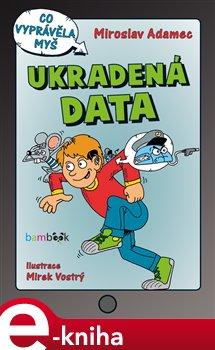 Obálka titulu Ukradená data
