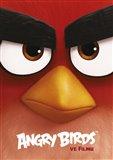 Obálka knihy Angry Birds ve filmu