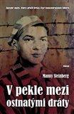 V pekle mezi ostnatými dráty (Zpověď muže, který přežil hrůzy čtyř koncentračních táborů) - obálka