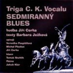 Obálka titulu Sedmiranný blues