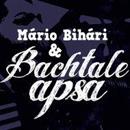 Bachtale Apsa